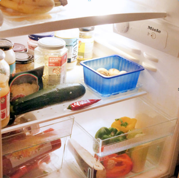 De koelkast van Leonie