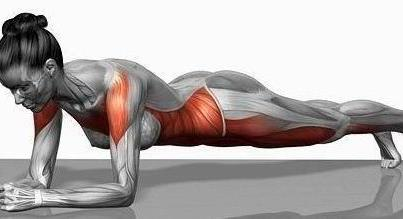 plank, exercise, workout, abs