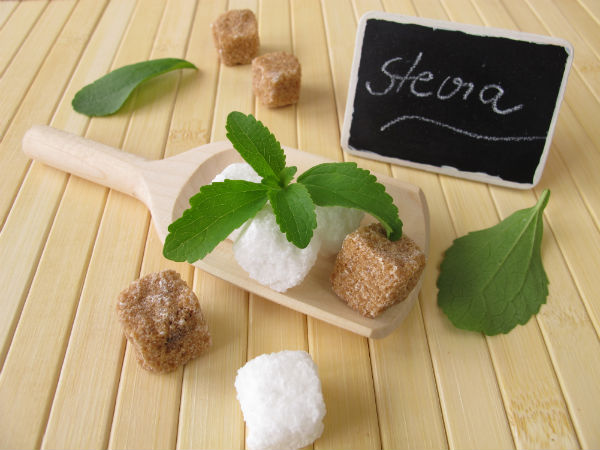 Stevia, suikervervanger, alternatief suiker