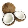Kokosvlees