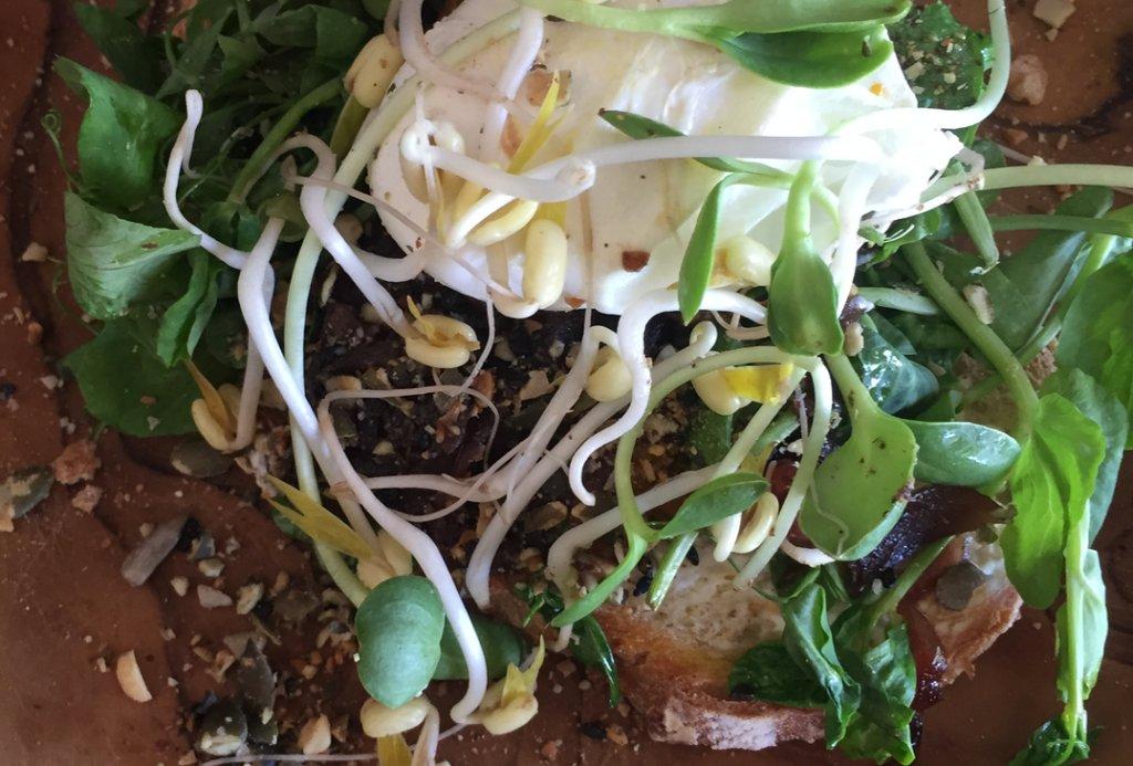 Toast met gegrilde pompoen, geitenkaas, kiemgroenten & gepocheerd ei