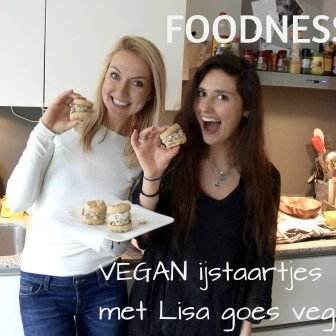 Vegan IJstaartjes