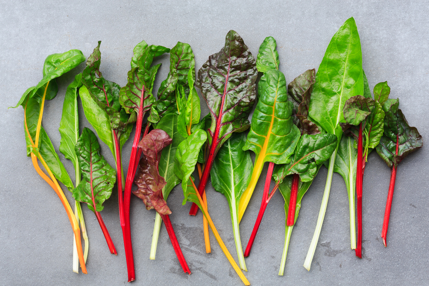 Rainbow Chard leaves