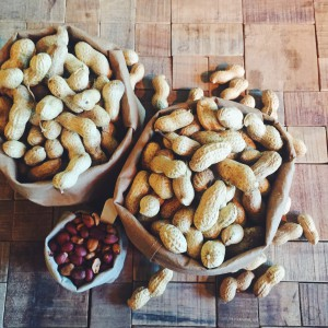 Waarom pindakaas gezond is + bezoek aan pindakaasfabriek Calvé