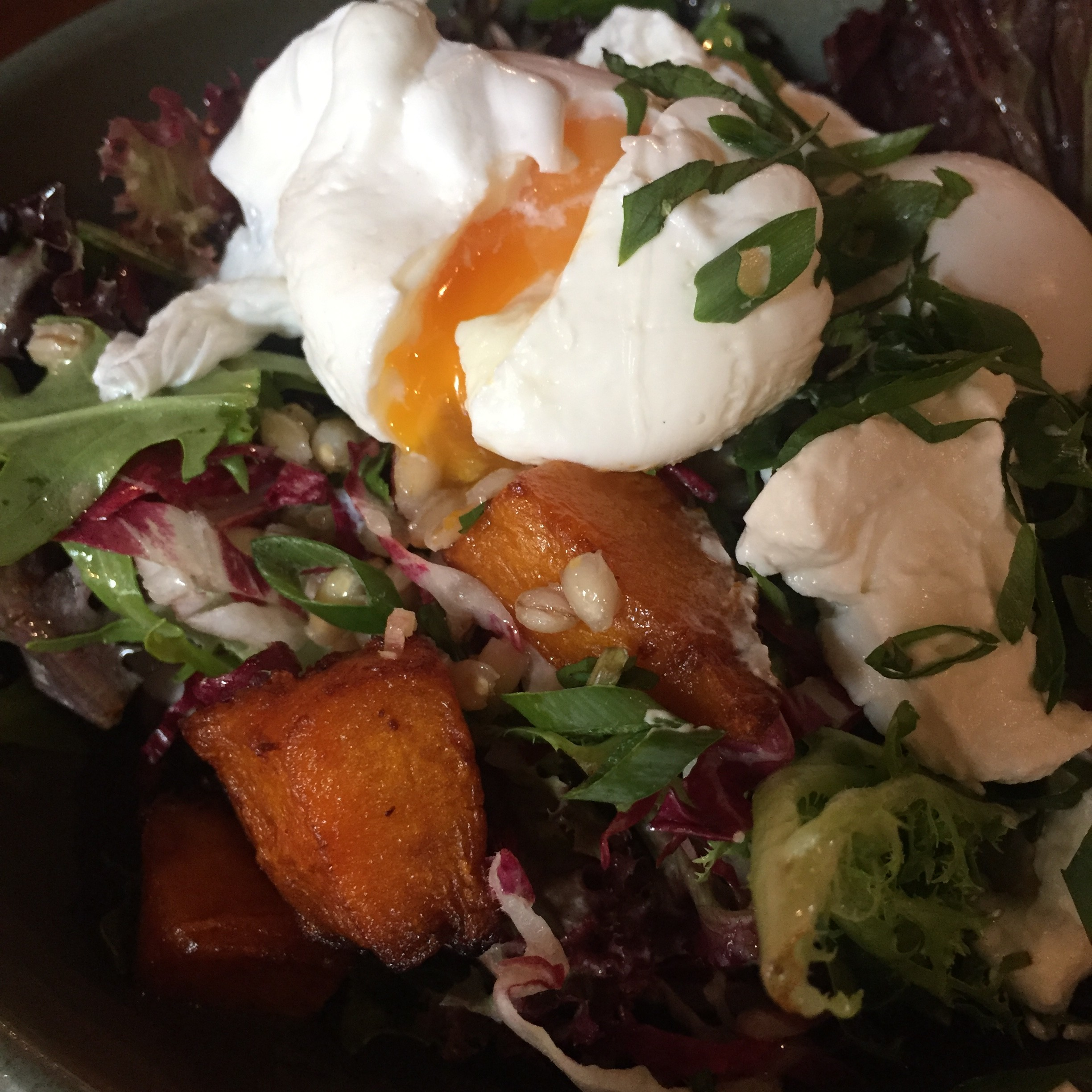 11x Breakfast, lunch & coffee places in Sydney (Manly, Bondi & CBD)