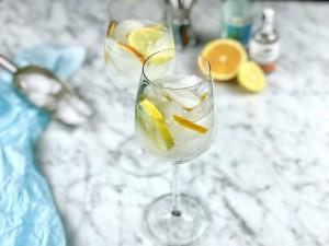 3x Gin-tonic: met mandarijn, radijs of citroen