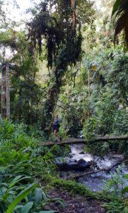 10 Must do's do in Ecuador