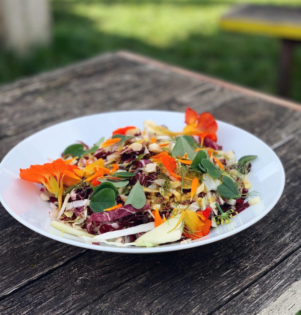 Biologische salade van roodlof met peer en schapenkaas