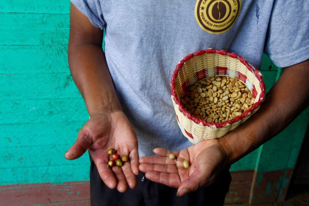 Hoe duurzaam is jouw koffie? 4 Lessen van mensen (& start-ups) die de wereld een beetje eerlijker maken
